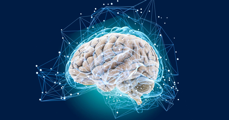 улучшить работу мозга